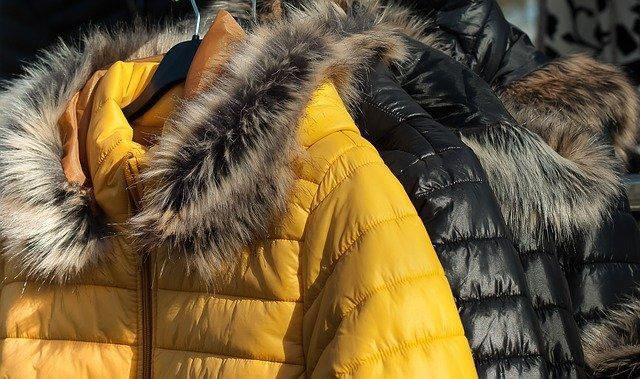 Fur Winter Garment Down Jacket  - jackmac34 / Pixabay